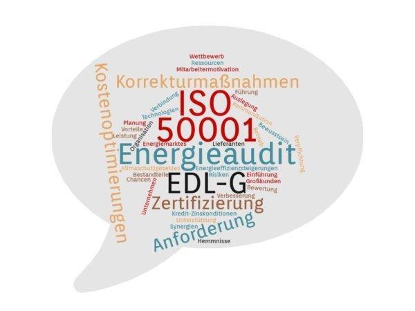 Wozu von einem Energieaudit gemäß EDL-G auf die ISO 50001 wechseln? (Seminar   Online)
